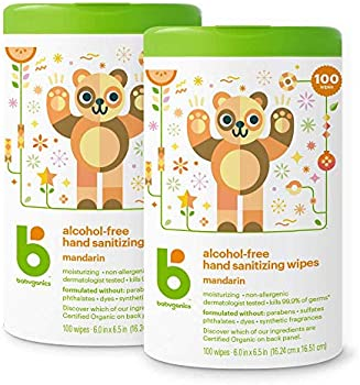 2-Pack of 100-Count Babyganics Alcohol-Free Hand Sanitizer Wipes