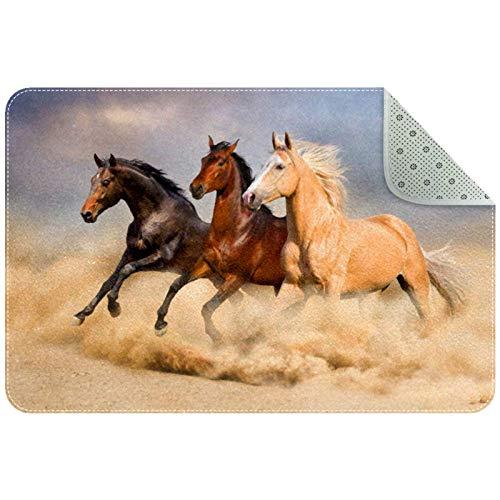 MEITD Felpudo para puerta de caballo, duradero, grande, resistente, para exterior, antideslizante, para entrada