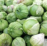 Sweet Yards Seed Co. Organic Tomatillo Seeds 'Grande Rio Verde' – Over 100 Open Pollinated Heirloom Non-GMO Seeds