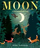Moon: A see-through picture book