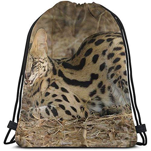 Lewis Beerb Serval Cat Spotted Aggressive Grass Lie Mochila con cordón Mochila Bolsa Ligero Gimnasio Viaje Casual para Senderismo Natación