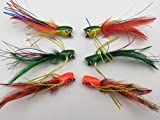 Fliegen Angeln Jazzy Poppers Auswahl, Set von 6Fliegen Gr. 4Für Bass Hecht Forelle Barsch Döbel Sole Pack # 320B