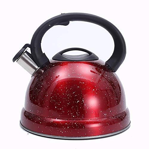 Tetera de acero inoxidable Tetera de cocina Tetera de metal para estufa Negro Blanco 3 colores para elegir, rojo