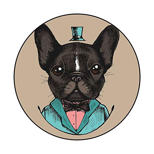 Washable Carpet French Bulldog in a Tuxedo Hand Drawn Vector Illustration Hipster Style 266750633 01 for Nursery Décor Carpet Diameter 41 in(104cm)