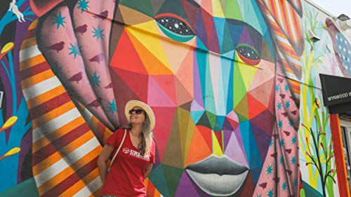 Street Art and Self-Expression in Wynwood, Miami