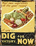 Dig Victory Now Wime Advert Games Advert Tin Wall Sign Warning Plaque Retro Iron Painting Metal Poster Artwork Decor for Garage Home Garden Bar Café;