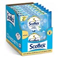 Scottex Complete Clean Hygienic Wet Paper 12 Packs of 42 Wipes by Kimberly-Clark S.R.L.