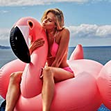 FTFSY 22 Style Giant Swan Watermelon Floats Pineapple Flamingo Swimming Ring Unicorn Inflatable Pool Float Child&Adult Water Toys,150cm Flamingo