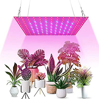 LED Grow Lights for Indoor Plants Full Spectrum Panel Growing Lamps with 169 Pcs Red & Blue LED for Succulent and Seedling Vegetable Flower(45W)