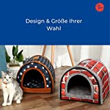 Zoom IMG-2 thematys grotta del gatto i