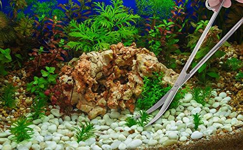 GENOVATION Aquatic Plant Tweezers Scissor Spatula Tool - 4 in 1 Stainless Steel Aquarium Tank Aquascaping Tools Set Fish Starter Kits & Aquariums Tank Plants Kit 6