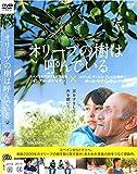 オリーブの樹は呼んでいる [DVD] image