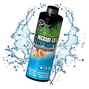 MICROBE-LIFT-Nite-Out-II--Starterbakterien-fr-S-und-Meerwasser-Aquarium-fr-sofortigen-Fischbesatz-einfach-und-sicher
