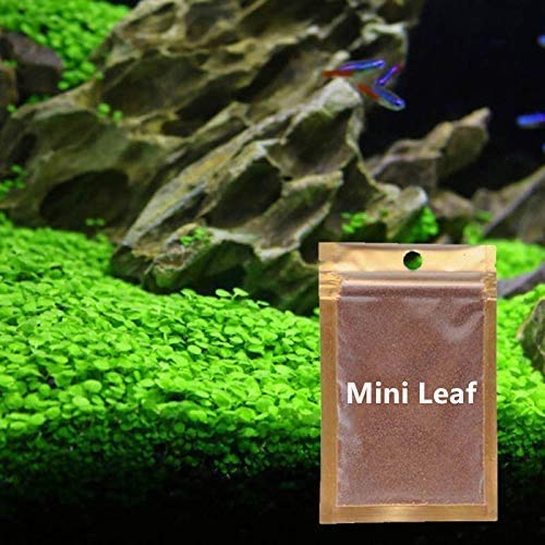 4 Pack Aquarium Small Leaf Grass, Aquarium Water Grass for Fish Tank Decoration...