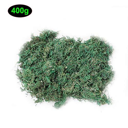 CAILI Mousse Artificielle,Lichen pour Décoration,Plantes Vertes Simulées, Décoration de Patio de Jardin Maison- Loisirs Créatifs 400g