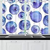 Zemivs Brillante Azul Natural Fresco arándano Cortinas de Cocina Cortinas de Ventana Niveles para café baño lavandería Sala de Estar Dormitorio 26x39 Pulgadas 2 Piezas