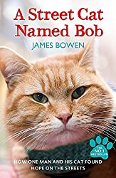 Amazon link for A Street Cat Named Bob