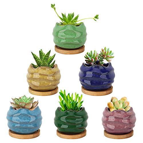 Lewondr Vasi da Fiori per Succulenti, 6 PZ Vaso da Fiori in Ceramica per Piante Succulente Cactus, Mini Vasi con Foro di Scarico e Vassoio in bambù Decorazione per Casa Ufficio Balcone - Multicolori