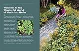 Zoom IMG-2 rosemary gladstar s medicinal herbs