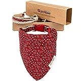 Pettsie, collare per cani, bandana e braccialetto dell'amicizia, confezione regalo inclusa, canapa resistente, anello a D per un facile fissaggio del guinzaglio (M, rosso)