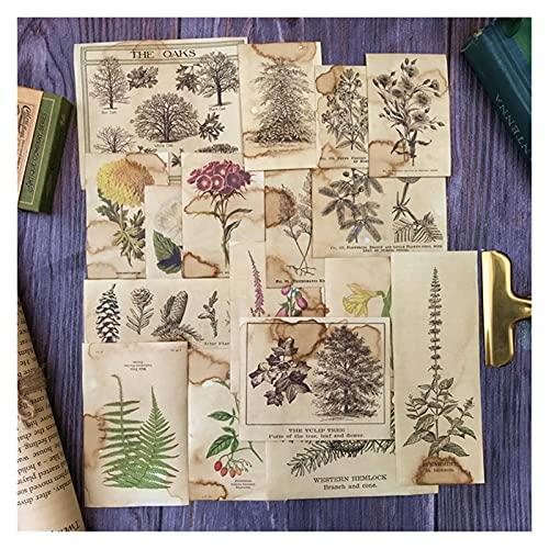FQDSWS 17 unids Café Teñido Flor Planta Scrapbooking Material Material Ruck Journal...