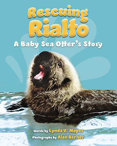 Rescuing Rialto: A Baby Sea Otter's Story (English Edition)