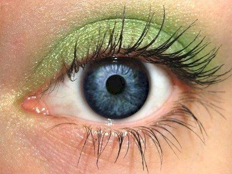 Eye Makeup Cilantro Eye Shadow Eyeliner   Bright Green Natural Eyeshadow Pro Pigment   Cruelty-free Vegan   Not Bare Minerals, MAC