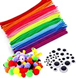 Zaloife Pipe Cleaners Crafts Set, Pompones Manualidades de Colores y Bastoncillos de Limpiapipas, Ojos Adhesivos Manualidades, para DIY Art Craft Decoración (Colores Mezcla)