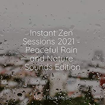 Instant Zen Sessions 2021 - Peaceful Rain and Nature Sounds Edition