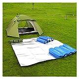 Fuxwlgs Manta de Picnic Nuevo colchón de Camping colchón de Tienda de campaña Papel de Aluminio Impermeable Eva Plegable Picnic Picnic Playa Pista al Aire Libre Mat Multi TAMAÑO (Size : 300X300cm)