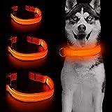 Iseen Collar de perro LED micro USB recargable con 3 cables reflectantes, de seguridad, ajustable, correa de nailon suave para perros pequeños, medianos y grandes (L, naranja)