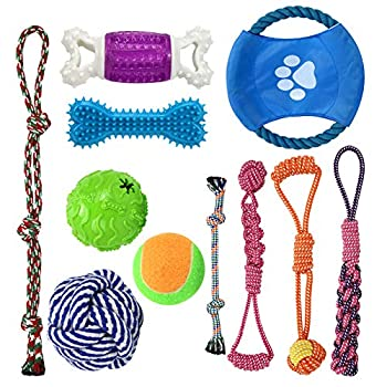 Dog Chew Toys for Aggressive Chewers,11 Pack Dog Rope Toys Sets,Tug of War Dog Toy Toothbrush Chew Toys,IQ Ball and Squeaky Rubber Bone Puppy and Small Dog  11 Pack