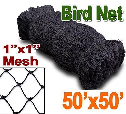 Meichang Scarlett 25#039 X 50#039 or 50#039 X 50#039 Net Netting for Bird Poultry Aviary Game Pens New 1quot Square Mesh Size 50#039 x 50#039