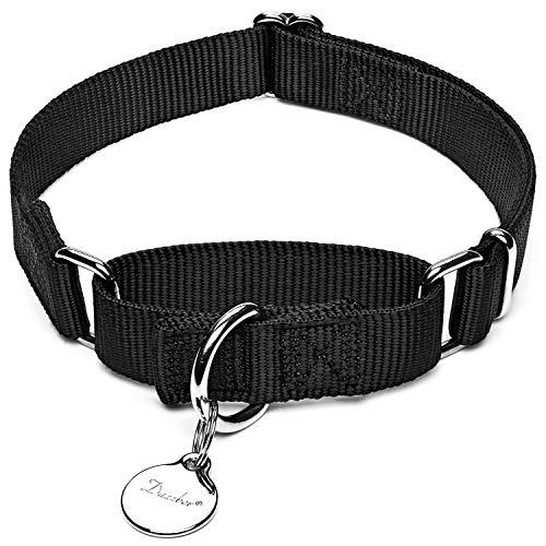 Dazzber Martingal Halsbänder für Hunde, Verstellbar Langlebig Kein Escape Stop Ziehen Hundehalsband Nylon für Große/Mittlere/Kleine Hunde (Mittlere, Schwarz)