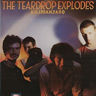 Kilimanjaro by The Teardrop Explodes (2001-01-16)