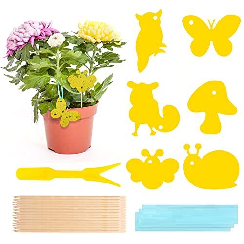 Gelbsticker, 60 Stück Gelbsticker Fliegenfänger, Fliegenfalle Gelbtafeln Trauermücken Bekämpfen, Fliegenfalle Pflanze für Pflanzen Auf dem Balkon oder Im Garten
