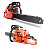 20 Inch Gas Powered Chainsaw, 62CC Woodcutting Chain Saw with Tool Kit for...