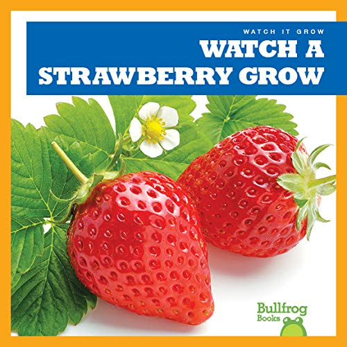 Watch a Strawberry Grow (Bullfrog Books: Watch It Grow)