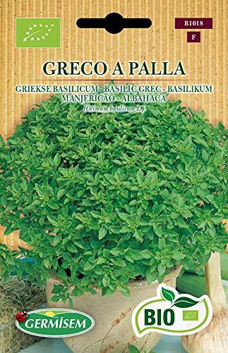 Germisem Biologico Greco A Palla Semi di Basilico 2 g