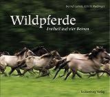 Dülmener Wildpferde: Freiheit auf vier Beinen