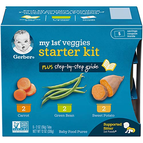 supported sitter baby food - 1