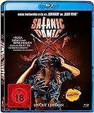 Satanic Panic - Uncut Edition [Blu-ray]