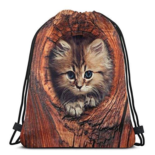 Gatito de gato en la cama bolsas de hombro con cordón personalizado bolsa de gimnasio, mochila de viaje, gimnasio ligero para hombre y mujer, 16 x 14 pulgadas