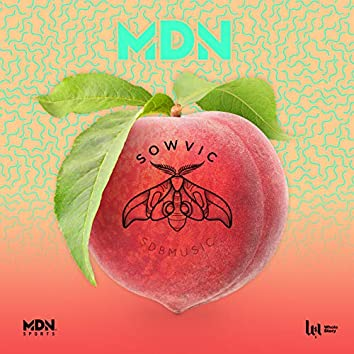 MDN feat. Wolfeat