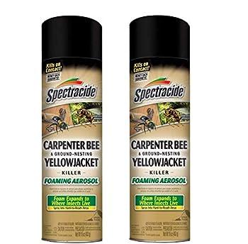Spectracide Carpenter Bee & Ground-Nesting Yellowjacket Killer Foaming Aerosol  HG-53371   Pack of 2