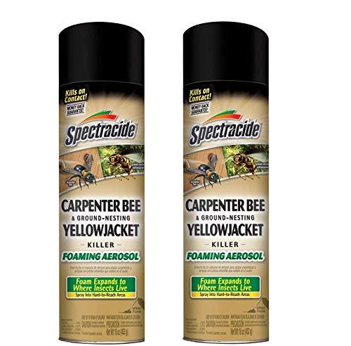 Spectracide Carpenter Bee & Ground-Nesting Yellowjacket Killer Foaming Aerosol (HG-53371) (Pack of 2)
