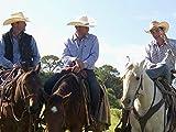 Saddle Up, Partner