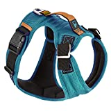 Gooby Pioneer Dog Harness with Control Handle & Seat Belt Restrain Capability, X-Large, Turquoise