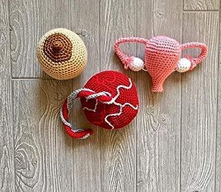 Crochet Midwife Birth and Breastfeeding Educational Kit