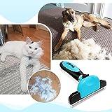 Zoom IMG-1 docatgo spazzola autopulente pettine gatto